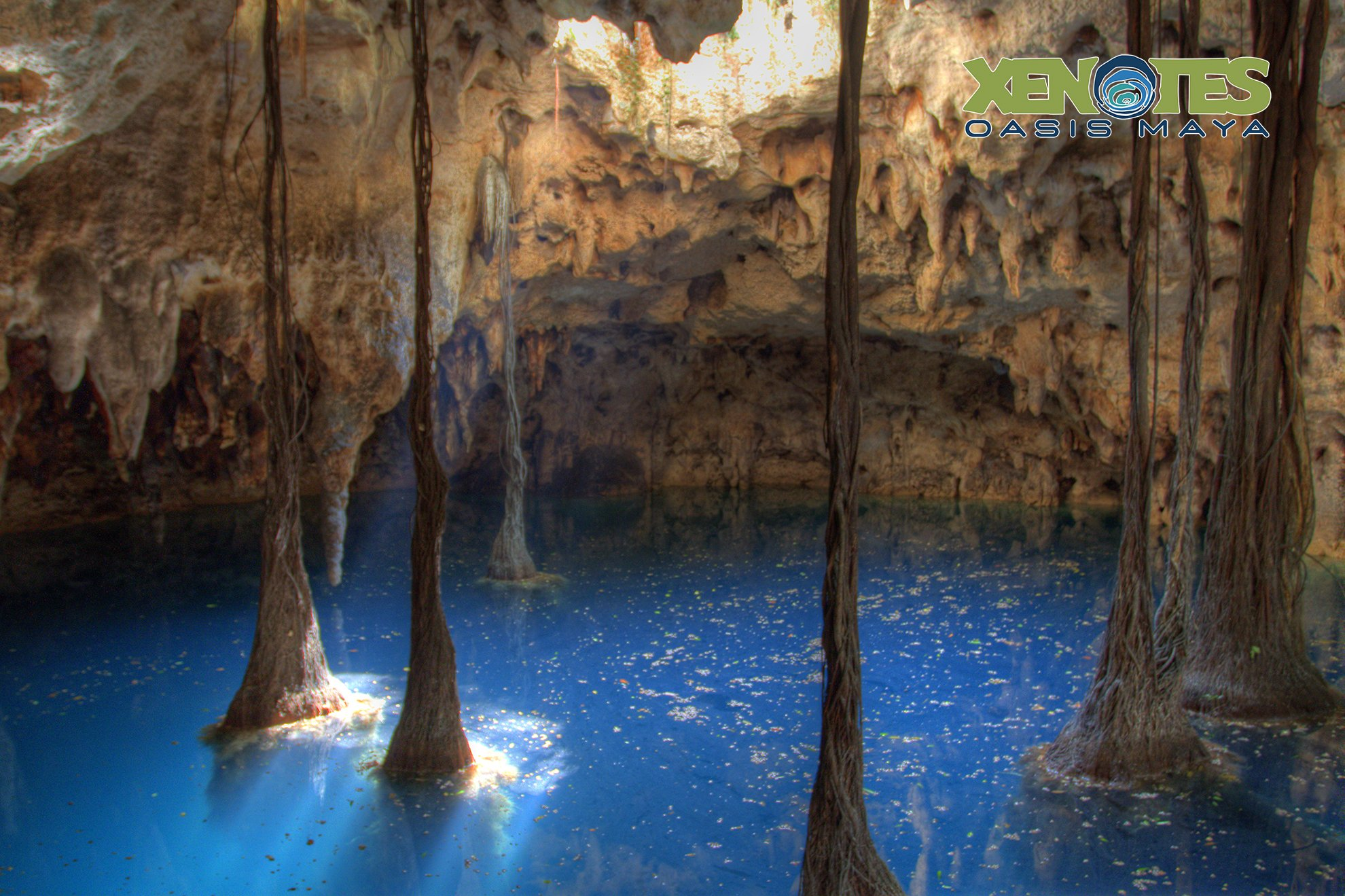my cancun tour of xenotes  photo report