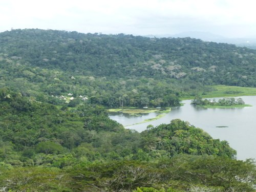 View from Gamboa Rainforest Resort Observation