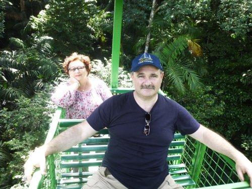 Gamboa Rainforest Resort: Cable Car