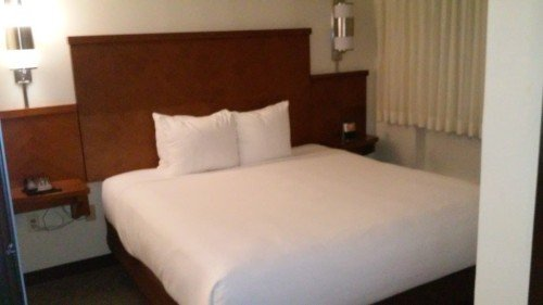 Hyatt Place Miami Airport-West/Doral: The Room